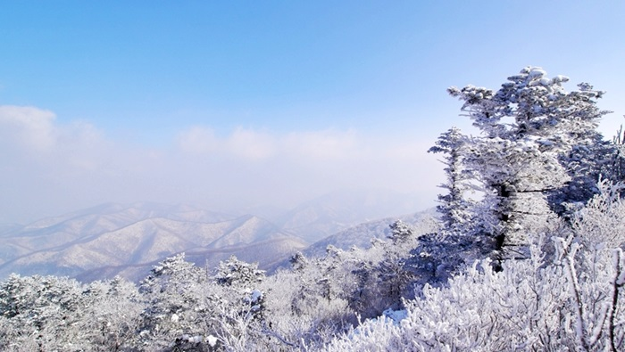 Korea snow tour